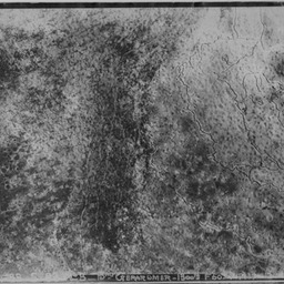 Aerial photo of front line, trenches, no man's land