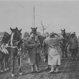 French supply line, with horses