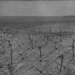 German barbed wire field, St Hilaire le Grand (Marne) 1916